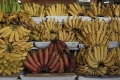 One of the staple foods of Ecuador, the humble banana and its many varieties.