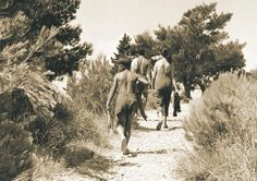 The path that led from Bol town centre to Zlatni Rat in 1965 - Celebrating 90 Years of Tourism Rat, Centre, Tourism, Couple Photos, Celebrities, Turismo, Couple Shots, Celebs, Foreign Celebrities