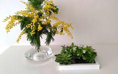 DECORACION FACIL: #DIARIODECOSPRING: Un cuadro con suculentas y pequeñas plantas