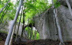 Skalná brána v Slopoch | Prírodná zaujímavosť | Súľov - Hradná | Žilinský kraj | Najkrajšie miesta na Slovensku