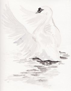 Original Swan, black and white watercolor painting. This is an original art and NOT a print. Each original piece of artwork is painted with high