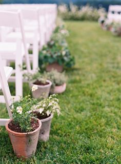 Potted Plants to mark the isle edges at Pippin Hill Farm & Vineyards in Charlottesville, Va Virginia Wineries, Charlottesville Va, Blue Ridge Mountains, Summer Weddings, Wine Country, Potted Plants, Lush, Florals, Vineyard