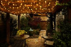 Edison Style LED String Light Set - 25 Lights 20 Feet End To End Connection - Buy Now