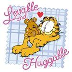 Garfield... Huggable Pooky...❤