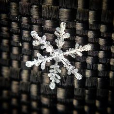 iPhone + $5 Macro Lens = Awesome Snowflake Shots by Ben Woodworth