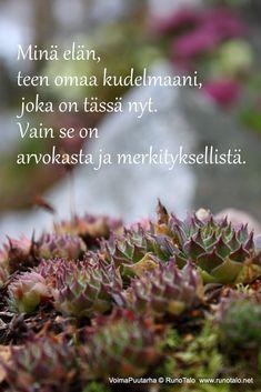 RunoTalon voimapuutarha: Voimapuutarha kortit viikolle 41: Pieni harjoitus jokaiselle päivälle Herbs, Herb