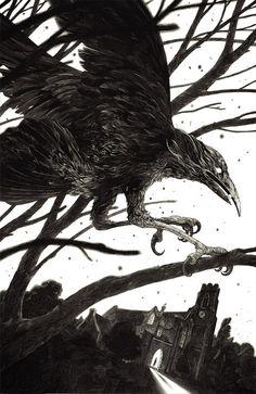 Nicolas Delort, black and white, illustration