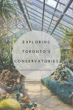 A guide to exploring Toronto's Conservatories including locations and opening hours and tons of pretty pictures for inspiration!