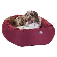 Give your pet 360 degrees of comfort with Majestic Pet Products Sherpa Bagel Dog Bed. Designed for both comfort and style, the bolster is made of a durable 7oz. Poly/cotton Twill with a Sherpa center cushion. The entire bed is stuffed with super premium high loft Polyester fiber fill. The base of the bagel bed is made of a heavy duty, waterproof 300/600 Denier to prevent the bed from sliding and to keep it safe from any spills or accidents. Our bagel beds are easy to clean - just ...