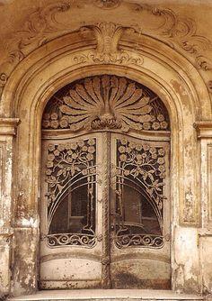 Gorgeous Wrought Iron Doors