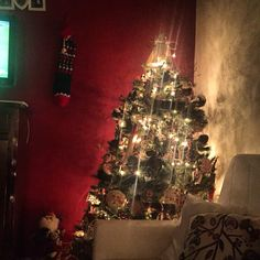 Il mio albero