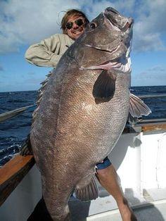 Vai um peixinho assado ou cru mesmo?