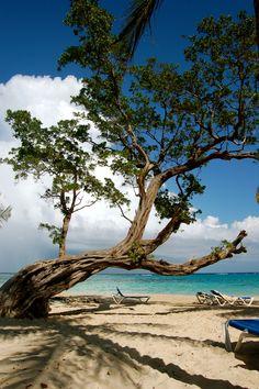 The Caribbean island of Jamaica.  No problem, mon!!  ASPEN CREEK TRAVEL - karen@aspencreektravel.com