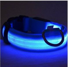 Collier Brillant LED pour Chien - PROMOTION