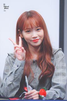 181118 Daegu(대구) 8th fan sign event #izone #chaewon Kpop Girl Groups, Kpop Girls, Japanese Girl Group, Pretty And Cute, Korean Girl, Yuri, Fandom, Sehun, Entertainment