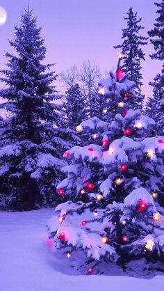 wood_new_year_christmas_fur-tree_fires_garland_snow_winter_sky_moon_evening_