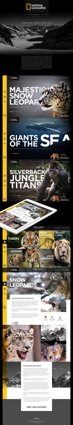 Infographics , UI Design et Web Design - National Geographic - The Endangered Species (Concept) on Web Design Served - CoDesign Magazine Ui Design Mobile, Modern Web Design, Web Ui Design, Flat Design, Webdesign Inspiration, Website Design Inspiration, Graphic Design Inspiration, Website Layout, Web Layout