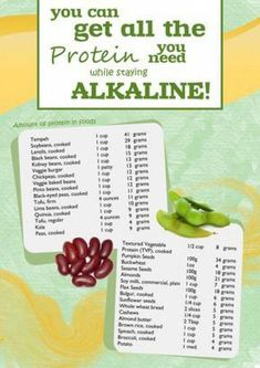 Protein Sources on an Alkaline Diet. for more info and resources on the Alkaline Diet. Free recipes, too! Freelee The Banana Girl, Acid And Alkaline, Alkaline Diet Recipes, Alkaline Diet Plan, Acidic Foods, Nutribullet Recipes, Pin On, Cancer Fighting Foods, Cancer Cure