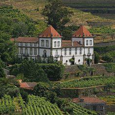 Casa das Torres de Oliveira #Douro #Portugal by portugalaconteceoficial
