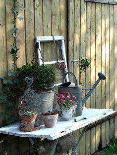 Lovely Cottage Garden Display.....:)