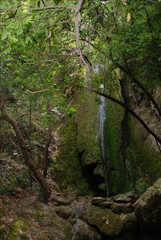 Der Wasserfall von Balos Plants, Waterfall, Plant, Planets