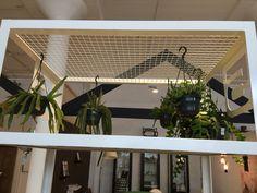 Planten ophangen bij scheiding kamers?