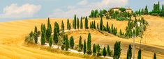 Book Tuscany sightseeing tours and attractions with DISAKI