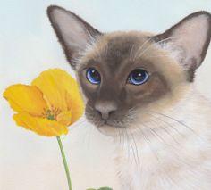 "Siamese Cat ""Flower for you"" Limited Edition Fine Art Canvas Print - Sue Barratt"