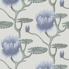 Powder Bath - wallpaper above beadboard - Cole & Son 95/4024 Contemporary Restyled