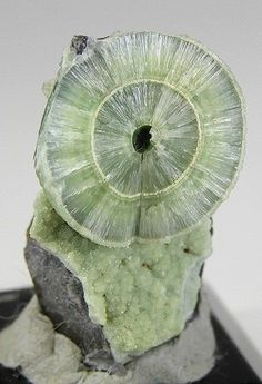 Wavellite - Wavelight is a classic radiating mineral, forming spectacular pinwheel aggregates emanating from a central core in spherulitic balls. When the balls are complete, the radial structure is internal and not usually visible. A crystal aggregate needs to be fractured to see and appreciate the outstanding radial habit of Wavellite. Wavellite was named in 1805 after William Wavell, an English physician who first discovered this mineral.