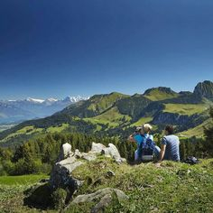 It may nearly kill you, but hiking in Austria is so worth it. You'll never forget the views.