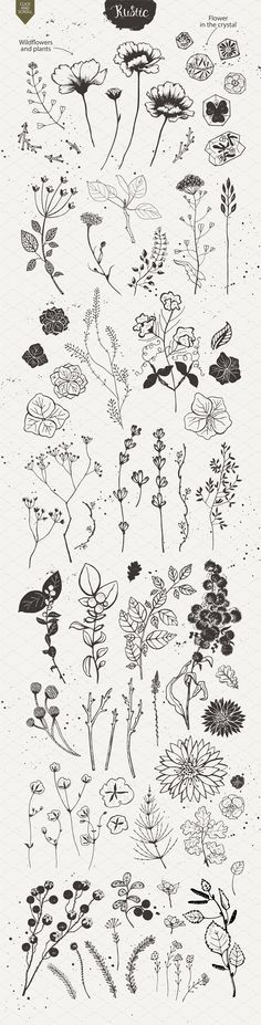 Rustic nature planner doodles and bullet journal decoration ideas. – Anna Rustic nature planner doodles and bullet journal decoration ideas. Rustic nature planner doodles and bullet journal decoration ideas. Art Floral, Motif Floral, Flower Tattoos, Small Tattoos, Tattoo Drawings, Art Drawings, Tattoo Sketches, Drawing Art, Small Drawings