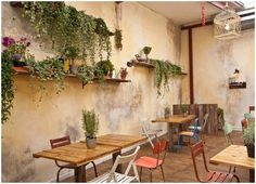 WALL - plus a bit of greenery looks great great. would bring a bit of life into the space as its feeling a bit dark