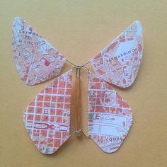 Serie Planos. Mariposa Caracas cuatricentenaria