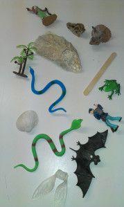 Fossils Geronimo