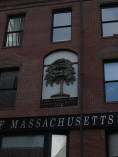The RMV in Chinatown, Boston was a banquet hall built by David Sears in 1872. There had been a tree on the site and Sears recreated the tree in brick. It represented the tree where the Patriots would meet to discuss their plans to thwart the British. The tree was lost behind a billboard for decades and the building was slated for demolition until it was re-discovered in the 1960s. Now it is a historical landmark. The site is an RMV building and T stop now but the tree remains visible to all!