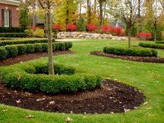 Fall Landscaping in Nichols Hills Oklahoma – Riemer and Son ...