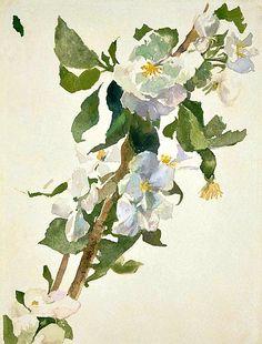 John La Farge  Apple Blossoms  1879