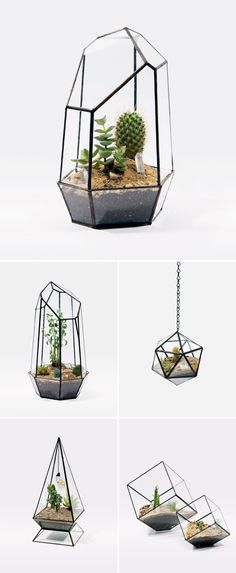 More amazing terrariums via Unruly Things