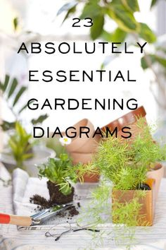 23 Diagrams That Make Gardening So Much Easier