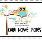 These adorable owls will help welcome your students to class each day!  There is an assortment of different owls on lined name plates and unlined n...