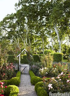 "For a garden outside of her Hamptons cottage, designer Podge Bune chose roses for their scent and didn't worry about color. ""I thought, 'Well, let's just have a riot.' I'm so bored with all white. But be warned. Roses are persnickety. I have to do a little nip and tuck every day."""