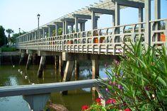 Disney Island Resort Bridge