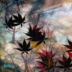Leaves - Original fine art abstract nature landscape painting by Bob Orsillo.   Copyright (c)Bob Orsillo / http://orsillo.com - All Rights Reserved.  Buy art online.  Buy photography online