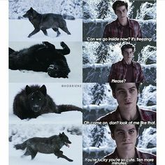 Stiles x Todos (Imagenes) Photos, Fanarts, Gifs, etc. From Stiles for everyone. There will be Thiam, Scisaac … # Werewolf # amreading # books # wattpad Stiles Teen Wolf, Teen Wolf Cast, Teen Wolf Boys, Teen Wolf Dylan, Stiles Derek, Teen Wolf Memes, Teen Wolf Imagines, Teen Wolf Quotes, Teen Wolf Funny