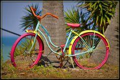 Yikes! A Painted Bike! - Bokeelia, Florida