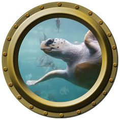 Smiling Sea Turtle Porthole Wall Decal by WilsonGraphics on Etsy, $13.00