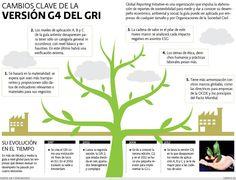 Cambios clave de la versión G4 del GRI | El Economista