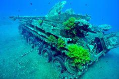 Jordan - Snorkelling - tank dive site near Aqaba m42