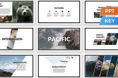 Pacific Presentation Template by SlideStation on @creativemarket